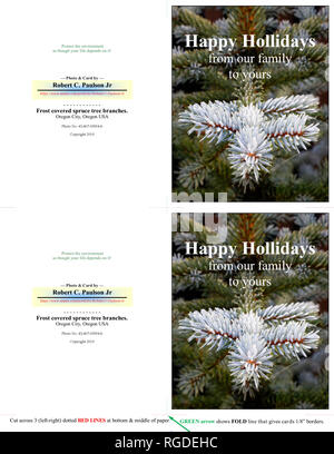 43,467.03854-b HAPPY HOLIDAYS, two 5x4 inch cards, frosty winter green spruce tree needles branches, dark green background, vertical (print cut fold) - Stock Photo