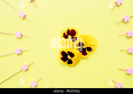 Seamless background with summer flowers. gorgeous pattern with cute pansy flowers. Floral background for textile, wallpaper, pattern fills, covers - Stock Photo