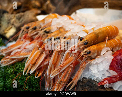 Freshly caught Langoustine's on ice at a fishmongers in London's Borough Market. - Stock Photo