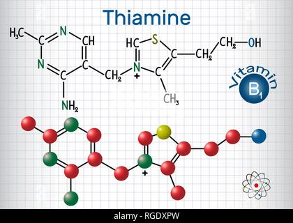 Thiamine (thiamin or vitamin B1) , found in food, used as a dietary supplement and medication.  Structural chemical formula and molecule model. Sheet  - Stock Photo