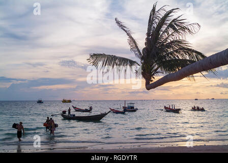 Sairee Beach, is the longest beach on the island. With its white sand, its coconut trees hanging over the water in Koh Tao, Thailand - Stock Photo