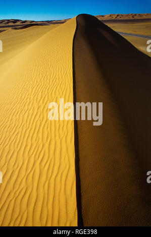 Sand dunes in the long next to the straight in the Sahara desert, Algeria, North Africa, Africa - Stock Photo