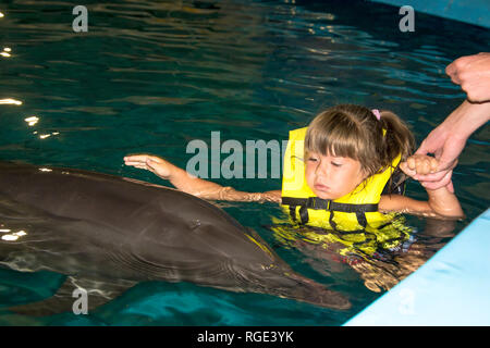 little girl swimming with the dolphins in the night pool - Stock Photo