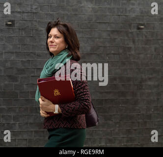 London, UK. 29th Jan 2019.  Clair Perry, Energy Minister, arrives at a Cabinet meeting at 10 Downing Street, London Credit Ian Davidson/Alamy Live News - Stock Photo