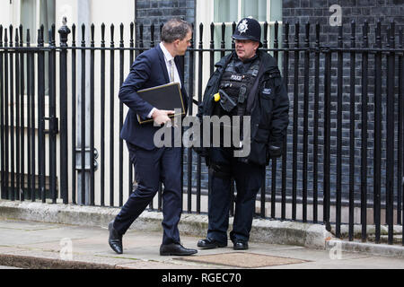London, UK. 29th Jan, 2019. Julian Smith MP, Chief Whip, leaves 10 Downing Street following a Cabinet meeting on the day of votes in the House of Commons on amendments to Prime Minister Theresa May's final Brexit withdrawal agreement which could determine the content of the next stage of negotiations with the European Union. Credit: Mark Kerrison/Alamy Live News - Stock Photo
