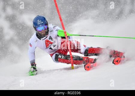 Marco SCHWARZ (AUT), action, individual action, single image, cut out, full body shot, whole figure. Alpine skiing, race, 79. Hahnenkamm race 2019, men's slalom, men, Kitzbuehel, Hahnenkamm, 26.01.2019. | usage worldwide - Stock Photo