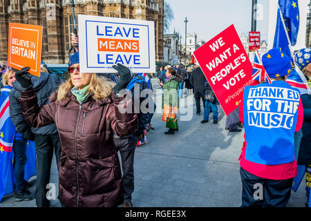 London, UK. 29th Jan 2019.  Leave means leave and SODEM, pro EU, protestors continue to make their points, side by side, outside Parliament as the vote on Theresa May's plan is due this eveningy. Credit: Guy Bell/Alamy Live News - Stock Photo