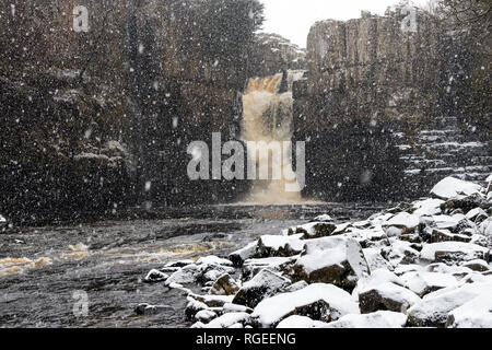 High Force, Middleton-in-Teesdale, County Durham, UK.  Tuesday 29th January 2019. UK Weather. Heavy snowfall creates a spectacular sight as the River Tees thunders over High Force near Middleton-in-Teesdale today.  Credit: David Forster/Alamy Live News - Stock Photo
