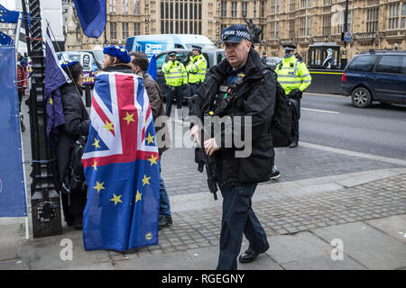 London UK 29th Jan 2019 Armed Police man walks past anti Brexit demonstrators outside the Houses of Parliament in Westminster on the day MPs vote on EU withdrawal deal amendments. Credit: Thabo Jaiyesimi/Alamy Live News - Stock Photo