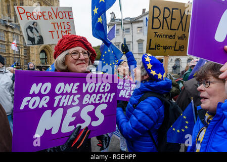 London, UK. 29th January 2019. Remainers with posters including 'No One Voted For This Mess'. On the day of more Brexit votes, protests around parliament continue, with Remainers waving EU flags, and Brexiteers holding signs leave means leave. A small group, some wearing yellow jackets came to shout at the Remainers, calling them traitors. Away from this there were a few more reasoned arguments, and others making their points with various costumes. Credit: Peter Marshall/Alamy Live News - Stock Photo