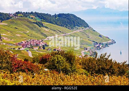 Lavaux Vineyard Terraces, Lake Geneva and mountains, Switzerland - Stock Photo