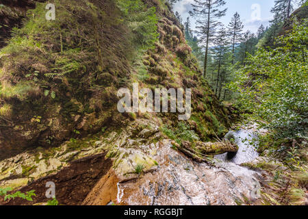 All Saints Waterfalls, town Oppenau, Northern Black Forest, Germany, upper section - Stock Photo