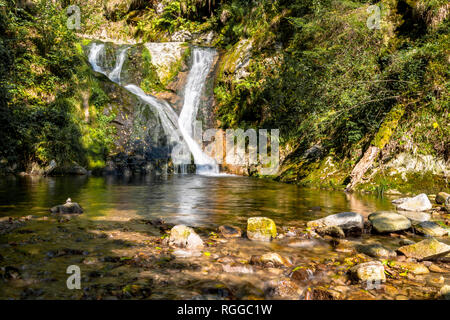 All Saints Waterfalls, town Oppenau, Northern Black Forest, Germany, lower section of the falls with basin - Stock Photo