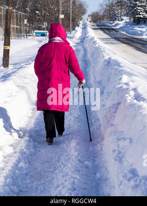 Senior Woman Winter Walk: A woman in a pink coat walking with a cane on a recently plowed snowy path. - Stock Photo