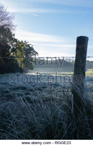 Morning countryside light shining through a tree onto a frosty field with barbed wire fence post and frost grass in the foreground - Stock Photo