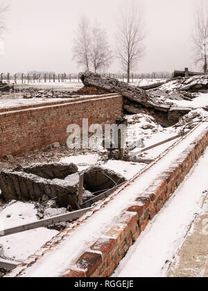 Remains of destroyed crematorium, Auschwitz-II Birkenau concentration and extermination camp, Oswiecim, Poland - Stock Photo