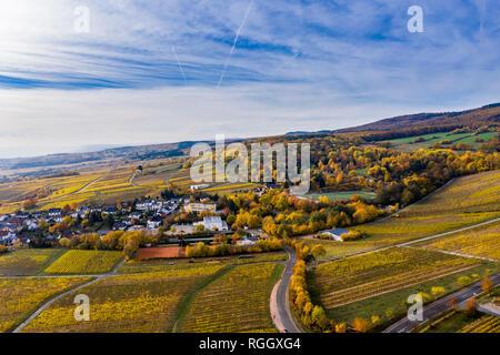 Germany, Hesse, Winkel, Oestrich, Rheingau, Aerial view in autumn - Stock Photo