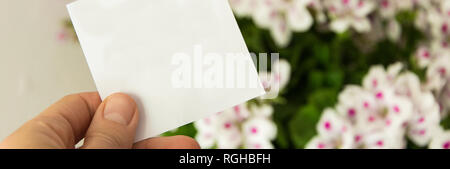 Front view of womans hand holding white (greeting) card, Beautiful fresh flowers in background - Stock Photo