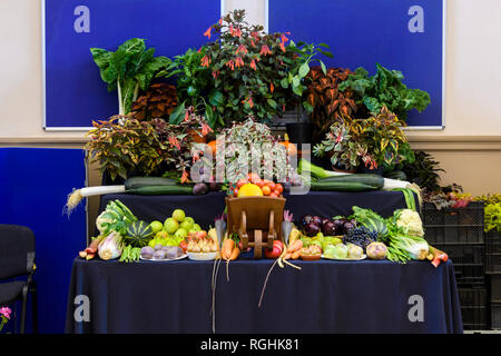 Wide variety of fresh homegrown produce (fruit, vegetables & plants) displayed at Gardeners' Show, Burley-in-Wharfedale, West Yorkshire, England, UK. - Stock Photo