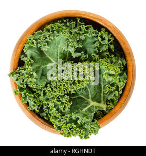 Fresh curly kale leaves in wooden bowl. Also called Scots kale, a leaf cabbage, Brassica oleracea. Edible green and healthy vegetable. - Stock Photo