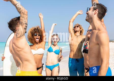 Happy friends cheering on the beach - Stock Photo