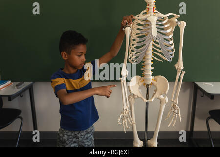 Front view of schoolboy explaining human skeleton model in classroom - Stock Photo