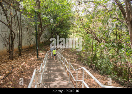 Darwin, Northern Territory, Australia-October 8,2017: Father and son walking down the rainforest steps in Darwin, Australia - Stock Photo
