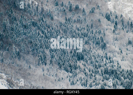 From a high view point, spectacular far shot of frozen spruce, birch and evergreen woods, covered in snow. Graphic minimalist moutain shot, lines and  - Stock Photo