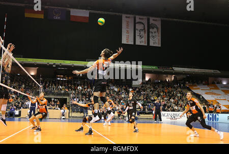 Berlin, Germany. 30th Jan, 2019. Volleyball, Men: Champions League, Berlin Volleys - Lotos Trefl Danzig, 4th round, Group D, 4th matchday. The Berliner Adam White (M) takes the ball for the butterfly. Credit: Andreas Gora/dpa/Alamy Live News - Stock Photo