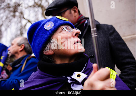 London, UK. 29th Jan, 2019. Anti-Brexit activists demonstrate outside the Houses of Parliament in central London. In the Commons, on a day of significant parliamentary activity over Brexit, MPs voted down a cross-party amendment tabled by Labour Party MP Yvette Cooper and Conservative Party MP Nick Boles designed to substantially reduce the risk of a much-feared ''no-deal'' exit from the EU. An amendment rejecting the principle of a no-deal exit was meanwhile approved, as was a government-backed amendment championed by Conservative Party MP Graham Brady calling for ''alternativ - Stock Photo