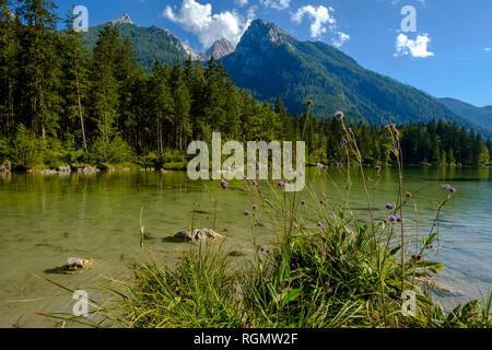 Germany, Bavaria, Upper Bavaria, Berchtesgadener Land, Ramsau, Berchtesgaden National Park, Lake Hintersee, Hochkalter mountain - Stock Photo
