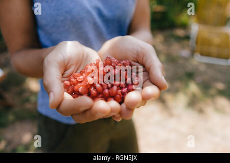 Woman's hands holding pomegranate seeds - Stock Photo