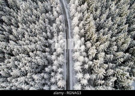 Scotland, snow on pine trees, empty road - Stock Photo