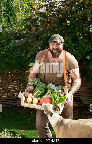 Mature man carrying crate with vegetables in his garden - Stock Photo