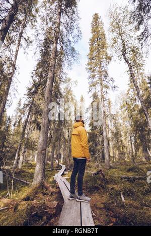 Sweden, Lapland, man wearing  windbreaker standing on boardwalk in the woods looking at distance - Stock Photo