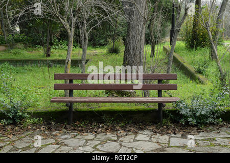 Wooden bench in public park with plants and trees. - Stock Photo