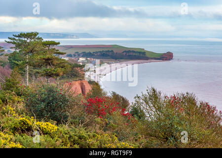 View from the coast path below West Down Beacon, near Budleigh Salterton, Devon. Looking east to Otter Hear at the mouth of the River Otter. - Stock Photo
