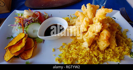 Fried calamari with rice and salad, Easter Island, Chile - Stock Photo