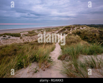 Small pathway on marram grass covered dunes with the North Sea in the background - Stock Photo