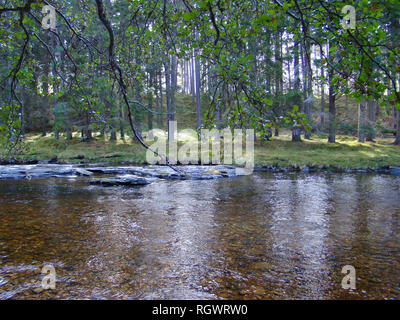 Rivers and streams at the hearth of the Cairngorms National Park, Scotland - Stock Photo