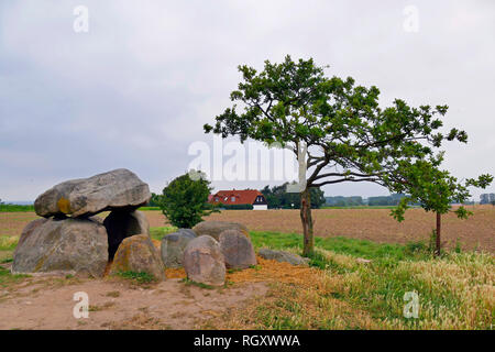 Megalithic grave of Neolithic, Dolmen Mechelsdorf, district of Rostock, Germany, Europe - Stock Photo