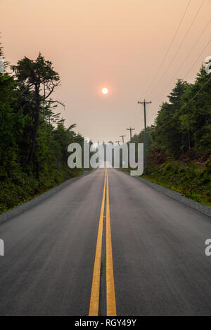 Scenic forest road during a vibrant summer day. Taken in Florencia Bay, near Ucluelet and Tofino, Vancouver Island, BC, Canada. - Stock Photo