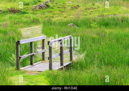 Small wooden bridge with handrails over a grassy ditch - Stock Photo