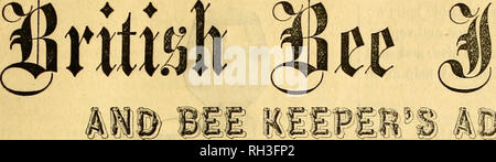 . British bee journal & bee-keepers adviser. Bees. THE. Please note that these images are extracted from scanned page images that may have been digitally enhanced for readability - coloration and appearance of these illustrations may not perfectly resemble the original work.. London - Stock Photo