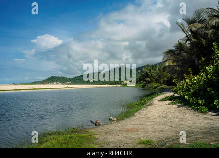 Coastal lagoon and tropical coastline vegetation at the scenic Arrecifes Beach. Tayrona National Park, Colombia. Sep 2018 - Stock Photo