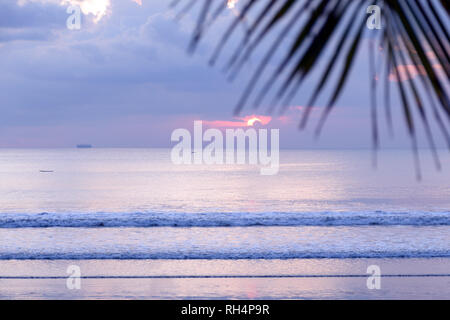 Beach background with palm tree. Jungle summer. Traditional Balinese purple sunset. Blurred photo with soft focus. - Stock Photo