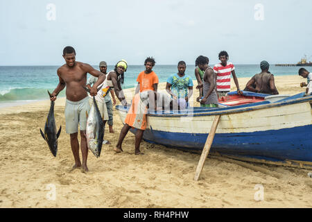 Cape Verde, Maio Island: fishermen back from a fishing trip, on the beach of Porto Ingles (Vila do Maio). Fish unloading: man holding two fish in his  - Stock Photo