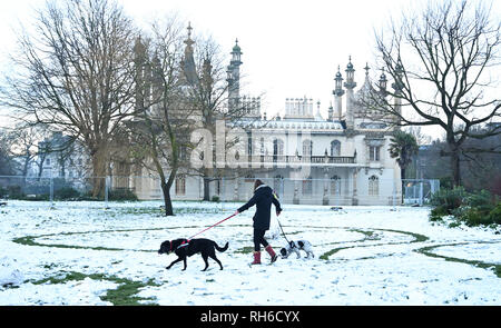 Brighton UK 1st February 2019 - A dog walker by the Royal Pavilion in Brighton after a heavy snowfall overnight . The snow and ice has caused problems with public transport throughout the south and many schools are closed in Britain Credit: Simon Dack/Alamy Live News - Stock Photo