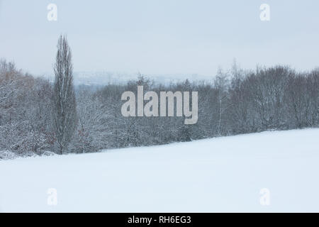 London, UK. 2nd February, 2019. High and hazy view over west London, from a snow covered park in the London suburb of Mill Hill. Credit: Joe Kuis /Alamy Live News - Stock Photo