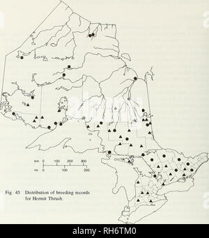 . Breeding birds of Ontario : nidiology and distribution. Birds; Birds; Birds. mi 0 Fig. 45 Distribution of breeding records for Hermit Thrush. Hermit Thrush, Catharus guttatus (Pallas) Nidiology RECORDS 160 nests representing 25 provincial regions. Breeds in both dry and wet wooded areas (102 nests); on rocky outcrops, usually with sparse deciduous growth (7 nests); in sphagnum bogs (5 nests); on blueberry barrens (2 nests); on limestone savannahs (1 nest); in rocky, open burns (1 nest); and in grassy areas of alder growth near a wood (1 nest). Wooded areas were coniferous (36 nests), mixed ( - Stock Photo